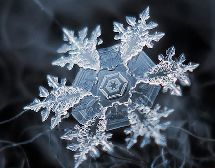 Why Are Snowflakes Beautiful?