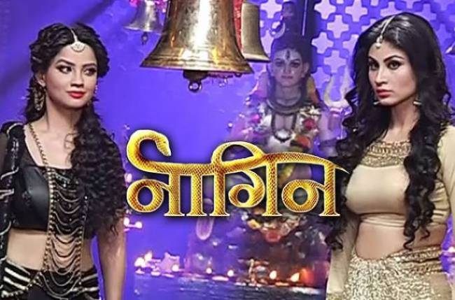 Image result for Naagin Season 2 Show cover