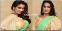 Manjusha Saree Stills