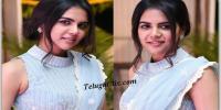 Kalyani Priyadarshan Saree Photos