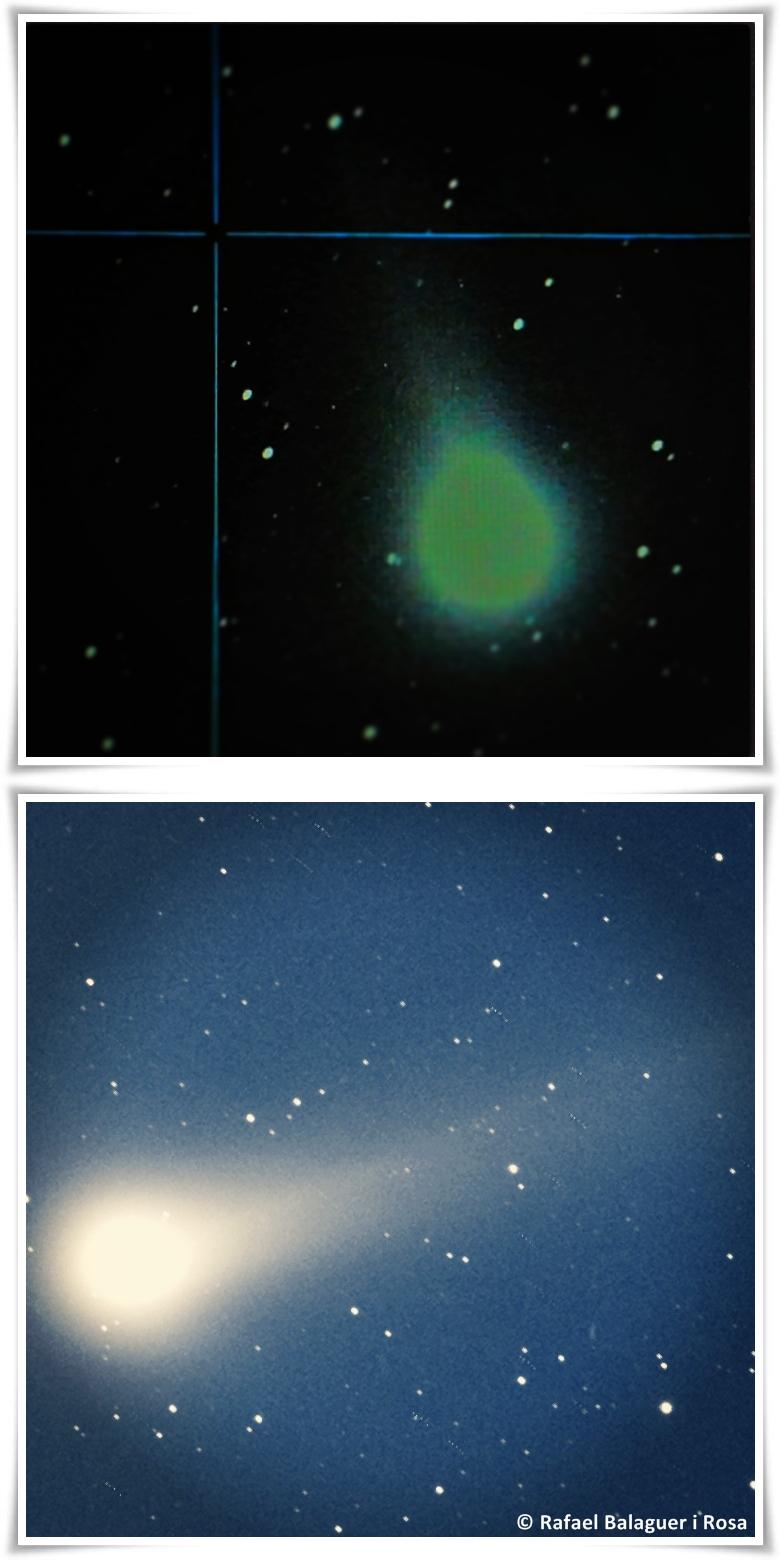 El cometa Lovejoy fotografiat des de l'Observatori Can Roig, per Rafael Balaguer i Rosa