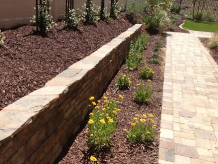 Stone faced retaining wall with paver walkways in Temecula McCabe's Landscape Construction