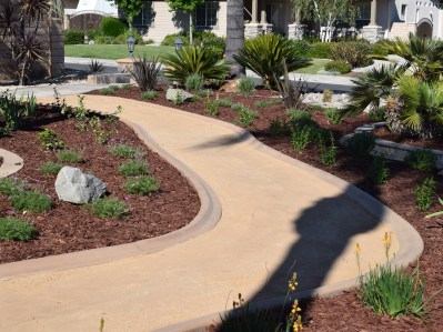 DG Pathway with low water plantings in Murrieta McCabe's Landscape Construction