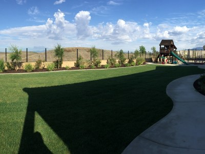 Rear lawn with playground area in Temecula McCabe's Landscape Construction