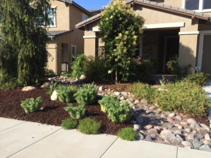 Dry River Stream Bed in Temeucla McCabe's Landscape Construction