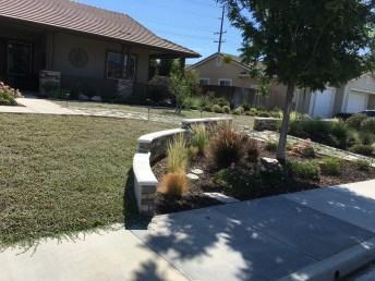 Other garden 2