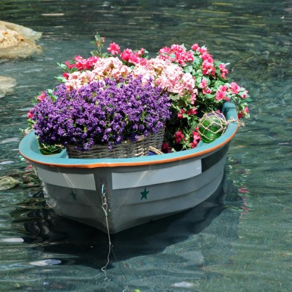 flowers in old boat