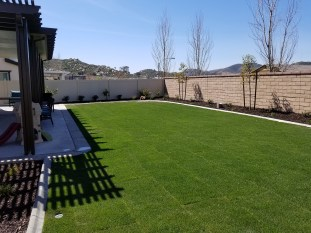 Lawn, plantings, patio and cover