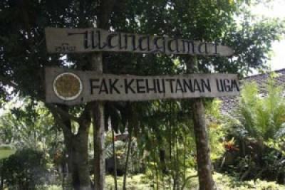 Wanagama Forest Yogyakarta Indonesia