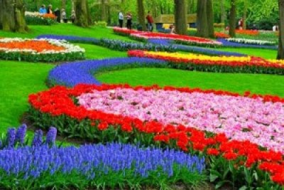 Beautiful Nusantara Flowers Park Indonesia