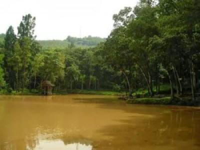 Situ Mustika Kota Banjar