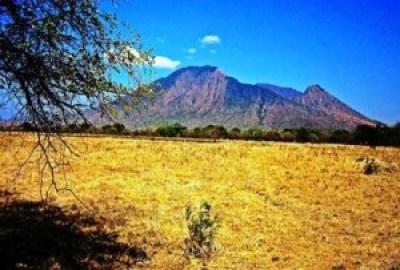 Taman Nasional Baluran Situbondo