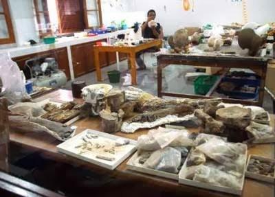 Wisata Sejarah ke Museum geologi Bandung 3