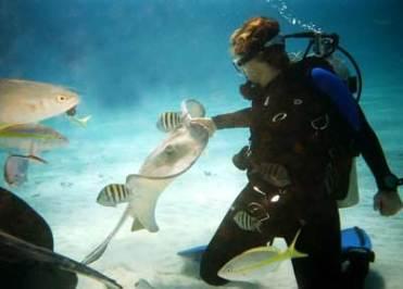 Seaworld Dunia Fantasi Ancol