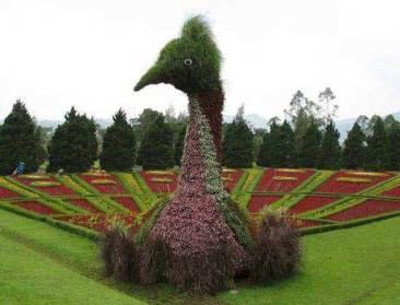 Taman Bunga Nusantara Bogor 2