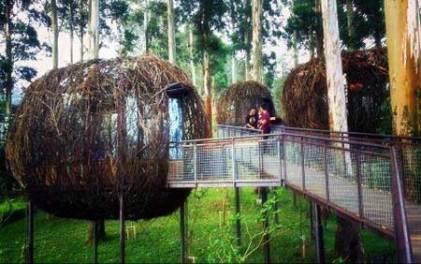 Dusun bambu Lembang Cisarua
