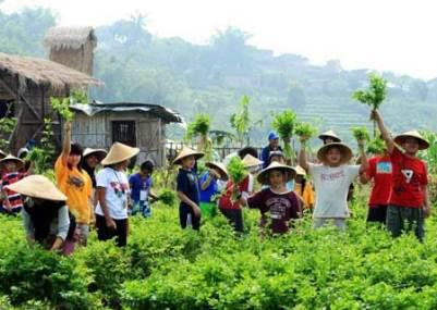 Kampoeng Kidz malang Jatim