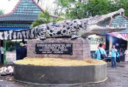 WEEKEND SERU DI TAMAN BUAYA INDONESIA JAYA BEKASI
