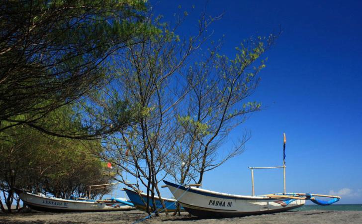 Keunikan Pantai Baru Yogyakarta
