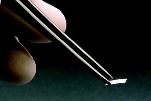 404_Mini-Spore-Strip.png-300x200