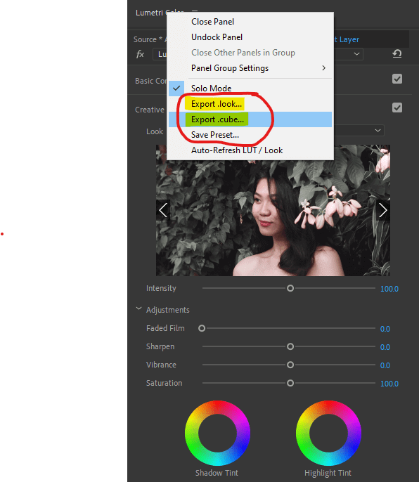 create-your-own-luts-on-premiere-pro