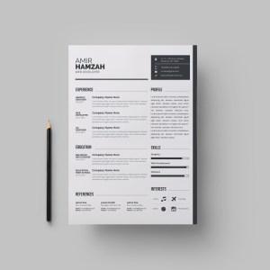 Modern Premium Resume Template