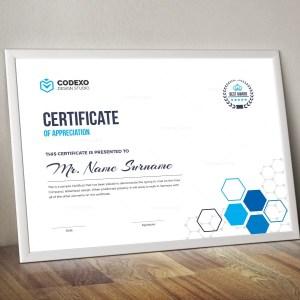 Top Rated Elegant Corporate Certificate Template