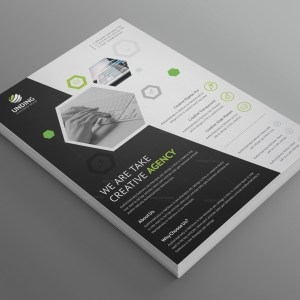 Charisma Elegant Premium Business Flyer Template
