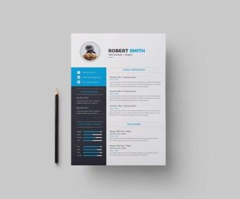 Dallas Professional Resume Design Template