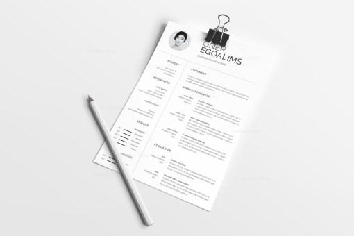 Creative Plain Resume