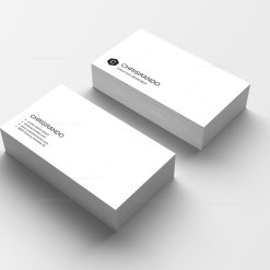 Basic Print Business Cards