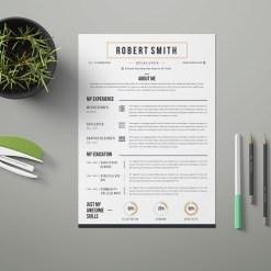 Classic Printable Resume Design