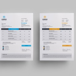 Stylish Business Invoice Design