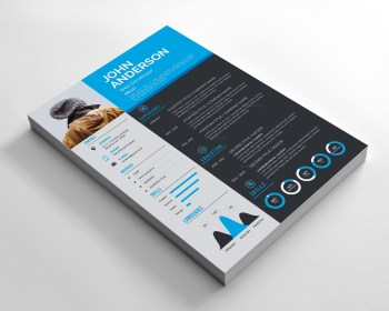 Sleek Resume Design