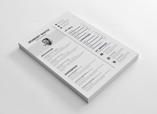Sleek Vector Resume Template