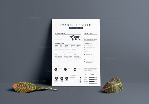 Cool Vector Resume Template