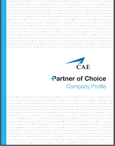 Company profile example 20.9641