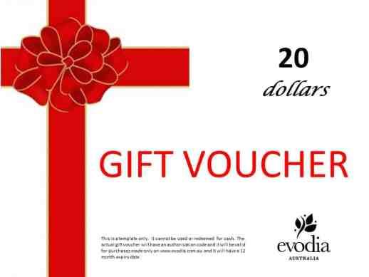 Gift Voucher sample 841