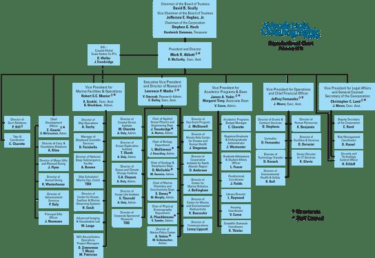 Organization Chart sample 4941