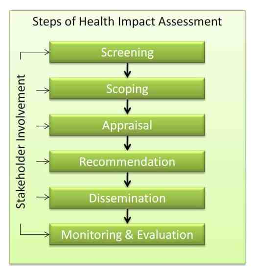 impact assessment example 12.41