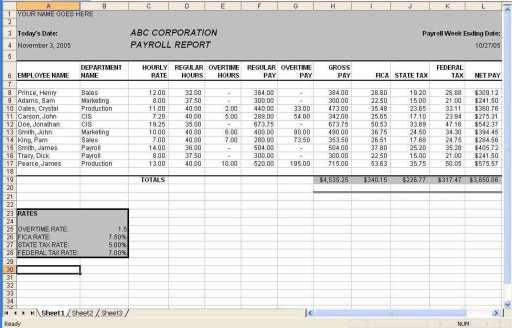 payroll sample template 4974