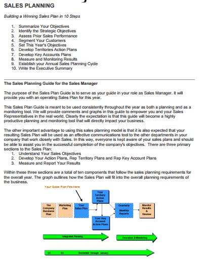 sales plan example 21.941