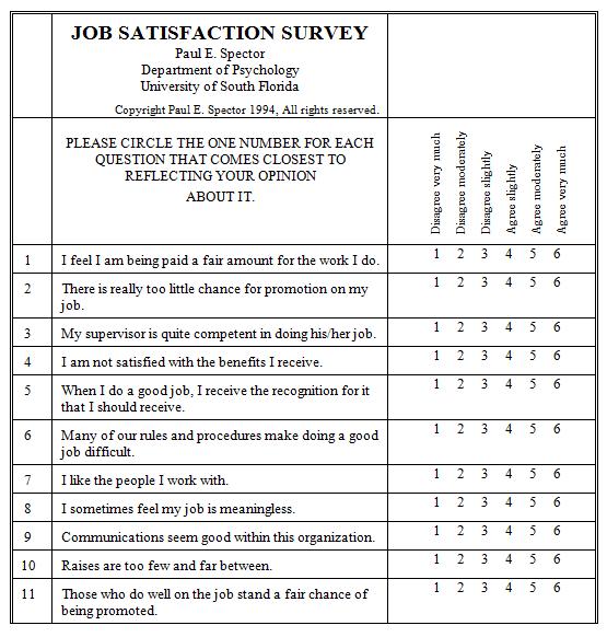 survey satisfaction