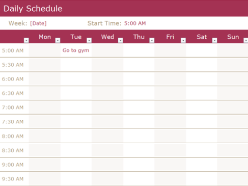 daily schedule sample 4461