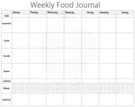 food journal sample 69461
