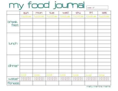 food journal sample 8461