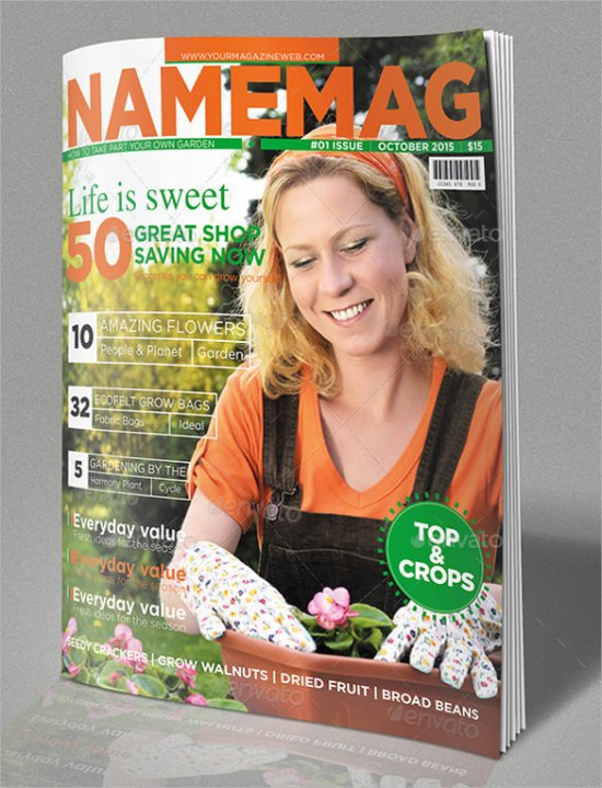 magzine cover template 6416