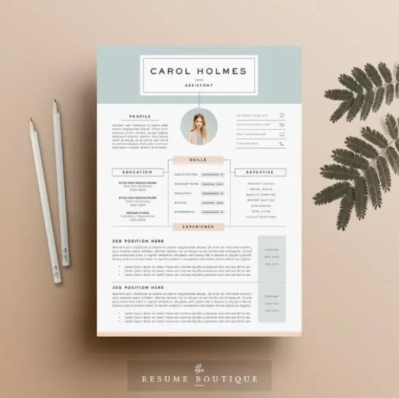 infographic cv template 112