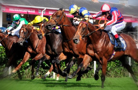 Temple Legal Protection at Newbury Race course