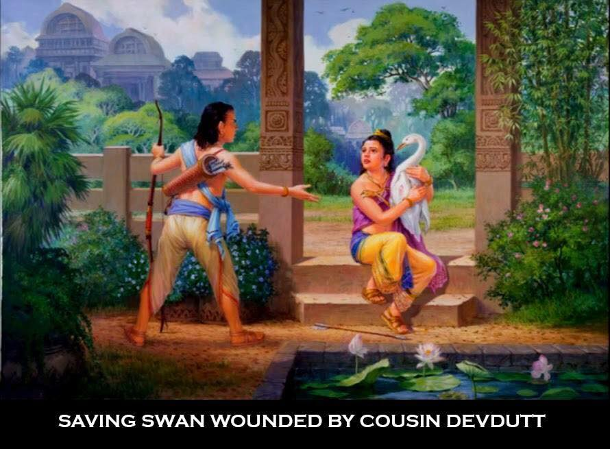 Image result for images of wounded swan